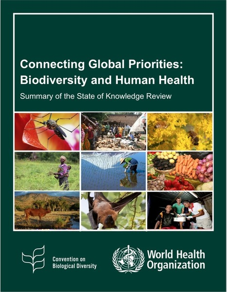OFFICIAL LAUNCH OF THE SUMMARY REPORT (the Secretariat of the Convention on Biological Diversity) | GarryRogers Biosphere News | Scoop.it