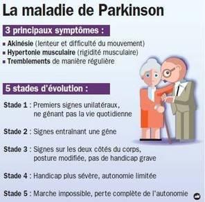 Actualité > Maladie de Parkinson : les avancées étonnantes de la science   Seniors   Scoop.it