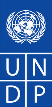Job: UNDP Peace and Development Advisor Position, Libya ...   Conflict transformation, peacebuilding and security   Scoop.it