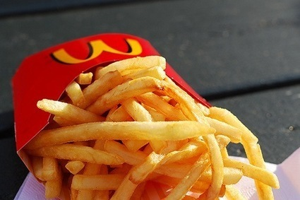Meat Extract in McDonald's French Fries - Science in Our World: Certainty & Controversy | French Fries | Scoop.it