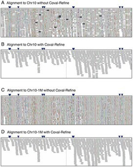 PLOS ONE: Coval: Improving Alignment Quality and Variant Calling Accuracy for Next-Generation Sequencing Data | wheat bioinformatics | Scoop.it