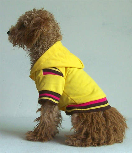 Fashion Leisure Sport T-shirt–PetSuperDeal.com | petsuperdeal | Scoop.it