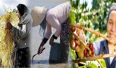 Travailleuses agricoles : une main-d'œuvre saisonnière sans couverture sociale - WMC   Agriculture et Alimentation méditerranéenne durable   Scoop.it