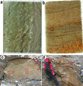 Rapid emergence of life shown by discovery of 3,700-million-year-old microbial structures | MycorWeb Plant-Microbe Interactions | Scoop.it
