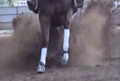 High-Tech Slo-Mo Reining Horse: What They Won't See in Oklahoma City This Weekend Via The Hoof Blog | Hoofcare and Lameness | Scoop.it