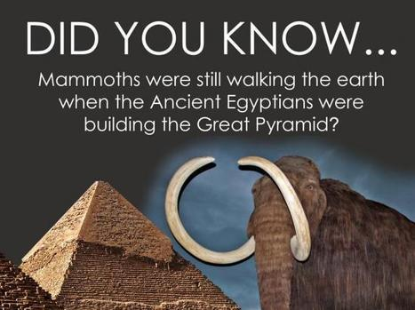 Did You Know: Woolly Mammoths Still Walked the Earth When the ...   Spiritualism   Scoop.it