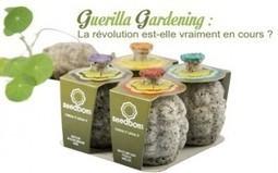 Guérilla gardening : La révolution est-elle vraiment en cours ? | Mobilier urbain | Scoop.it