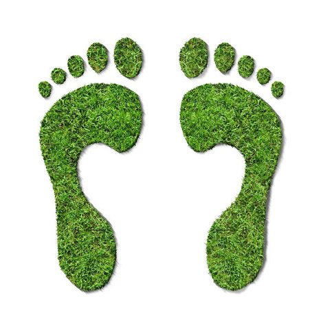 Calculate My Carbon Footprint | HSIE - Climate Change | Scoop.it