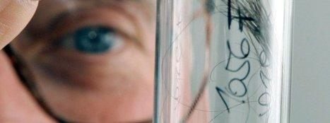 Haaranalyse ohne DNA: Neue Methode lässt Ermittler hoffen   #Research #Forensics   21st Century Innovative Technologies and Developments as also discoveries, curiosity ( insolite)...   Scoop.it