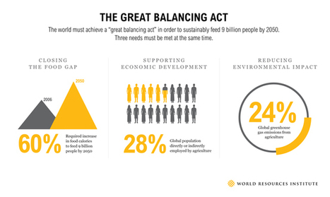 The Great Balancing Act: 3 Needs for a Sustainable Food Future | WRI Insights | Sustain Our Earth | Scoop.it