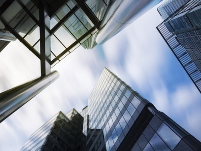 Glass buildings kill birds - architects must act! | Conservation | Scoop.it