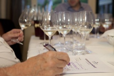 Germany beats Austria to Generation Grüner title | Daily wine news - the latest breaking wine news from around the world | News | decanter.com | Grüner Veltliner & More | Scoop.it