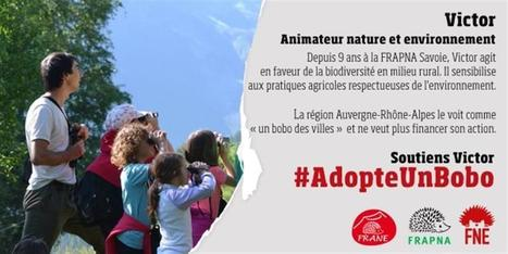 #AdopteUnBobo | Parti pris | Scoop.it