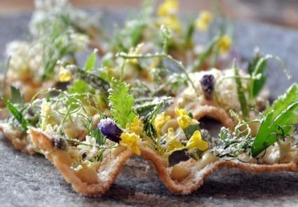 Le Noma, ex-«meilleur restaurant du monde», va fermer et rouvrir entouré d'une ferme urbaine | Slate.fr | Gastronomie et alimentation pour la santé | Scoop.it