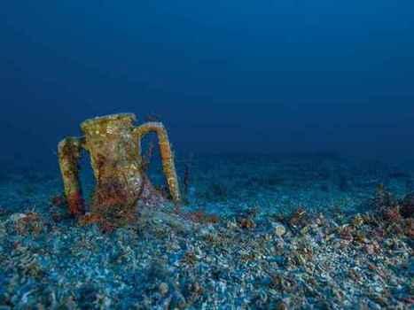 Nuevos y espectaculares tesoros de 2.050 años recuperados del naufragio de Antikythera | Mundo Clásico | Scoop.it