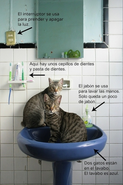 Spanish Reading Activity: Gatos en el baño - Spanish Playground | Preschool Spanish | Scoop.it