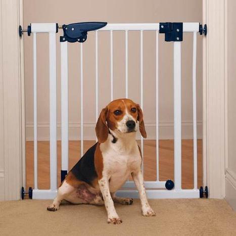 Pet Studio Pressure-Mounted Pet Gates - White at BaxterBoo | Pressure Mounted Pet Gates | Scoop.it
