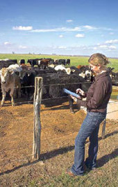 Syndromic surveillance - a key to disease monitoring - Bovine Veterinarian | Syndromic surveillance and risk based surveillance | Scoop.it