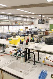 ENSEÑANDO BIOLOGÍA - Curso de actualización de prácticas de laboratorio para profesores de Biología de ESO y Bachillerato | Facultad de Ciencias (UNAV) | Scoop.it