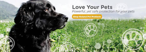 Natural & Organic Pest Control | Natural Pet Products - Wondercide | Property Inspections | Scoop.it