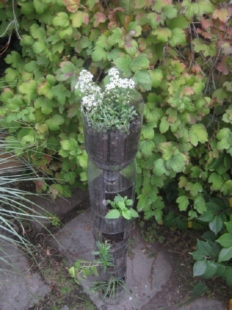 Come realizzare un giardino vert… - greenMe.it   Come fare l'orto in balcone o terrazzo, consigli e idee   Scoop.it