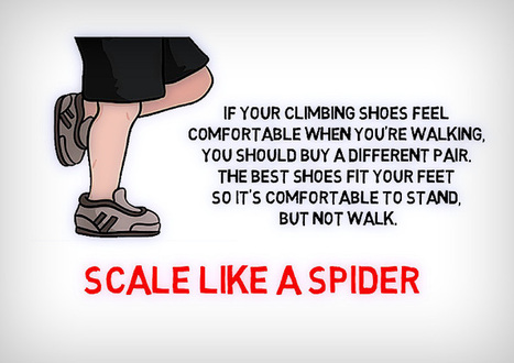 Scale like a Spider | Quotes Abouth Health | Scoop.it