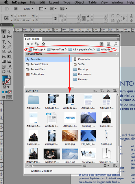 Tutorial InDesign: Come Importare Le Immagini Su InDesign Usando Il Mini Bridge | Impaginare Con InDesign: Tutorial E Guide Utili | Scoop.it