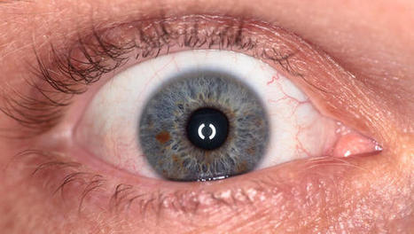 These Artificial Eyes Are Hauntingly Beautiful--And Made By A 3-D Printer | Real Estate Plus+ Daily News | Scoop.it