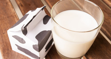 Virginia school files larceny charges against black student for taking his free lunch program milk   The Student Union   Scoop.it