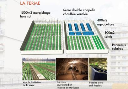 Parisculteurs : un grands pas pour l'aquaponie — ZONE-AH! pour l'agriculture urbaine   Damien CADOUX   Scoop.it