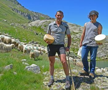 L'Ossau, un fromage au  sommet | The Voice of Cheese | Scoop.it