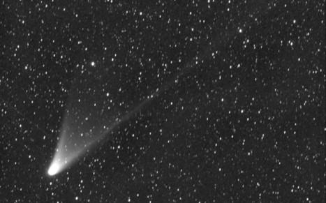 Schoolchildren discover new comet on school trip - Telegraph | Radio Show Contents | Scoop.it