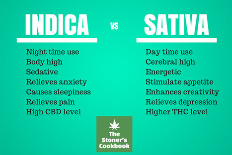 How to Decide Between Indica and Sativa – Which is Right for You? - The Stoner's Cookbook Blog | Medical Marijuana | Scoop.it