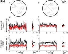 The Influence of Spatiotemporal Structure of Noisy Stimuli in Decision Making | Social Foraging | Scoop.it