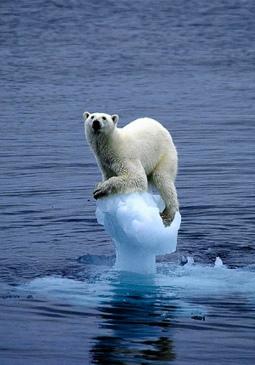 Noticias de ecologia y medio ambiente | La realidad climática está superando nuestras previsiones más negativas | Agua | Scoop.it