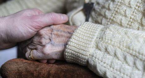 Un traitement expérimental d'Eli Lilly contre Alzheimer non-concluant | Maladie d'Alzheimer | Scoop.it