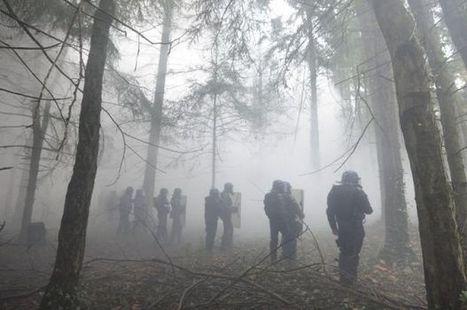 Brouillard lacrymogène en forêt profonde - Making-of | What's new in Visual Communication? | Scoop.it