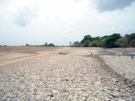 Extreme Drought Causes Environmental Crisis in Colombia | Sustain Our Earth | Scoop.it