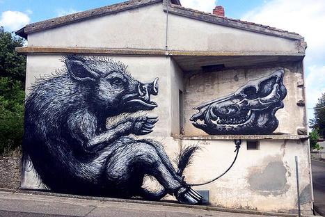 ROA Street Art Mural in Sardinia | World of Street & Outdoor Arts | Scoop.it