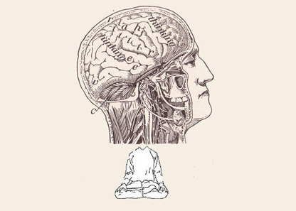 The emerging field of contemplative neuroscience | Mindful | Positive futures | Scoop.it