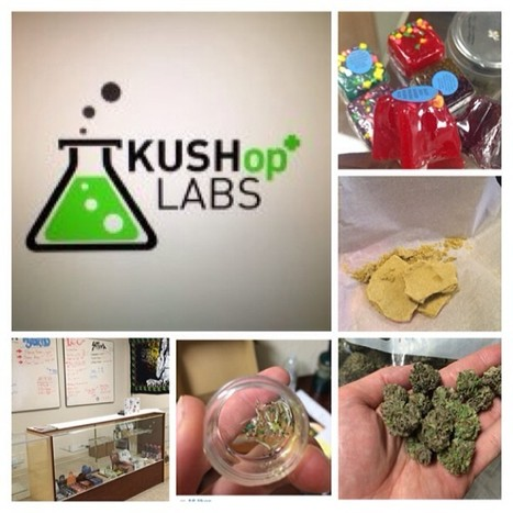 The Tatted Blogger: Kushoplabs Has moved and Now located In the City of Perris | Marijuana Extract, Concentrate, Oil Rigs And Bongs | Scoop.it