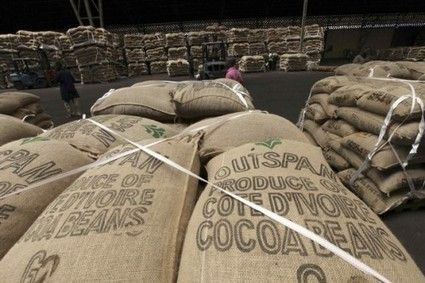 Côte d'Ivoire: De la prison pour du cacao - Connectionivoirienne.net   FILIERE CAFE CACAO EN COTE D'IVOIRE   Scoop.it