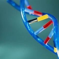 RNA Fragments May Yield Rapid, Accurate Cancer Diagnosis: Scientific American | Health Studies Updates | Scoop.it