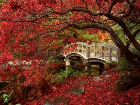 Twitter / Globe_Pics: Japanese Garden, Royal Roads ... | A Love of Japanese Gardens | Scoop.it