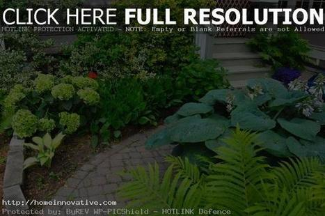 Beautiful Small Garden In The House   home design   Scoop.it