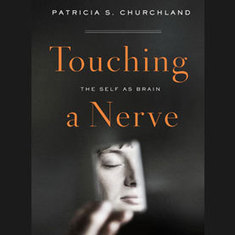 Touching a Nerve : Exploring the Implications of the Self as Brain, Part 2 [Excerpt]: Scientific American | Artificial Intelligence | Scoop.it