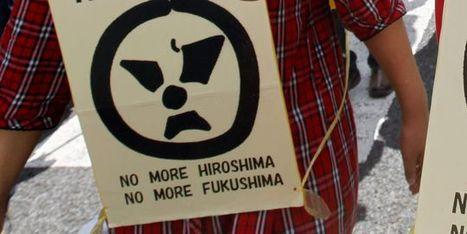 Le Japon peut se passer du nucléaire d'ici à 2030 selon le ministre de l'industrie   Des 4 coins du monde   Scoop.it