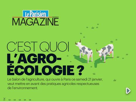 Antisèche : c'est quoi, l'agro-écologie ? | Agriculture durable et protection des cultures | Scoop.it