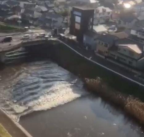 Nouveau tsunami à Fukushima Daiichi - les faits et conséquences | Japon : séisme, tsunami & conséquences | Scoop.it