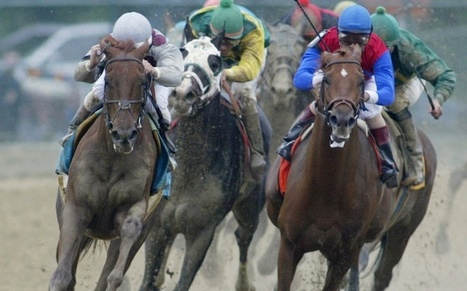 Mexican Drug Cartel Hides Millions in Horse Races, U.S. Alleges | The Billy Pulpit | Scoop.it